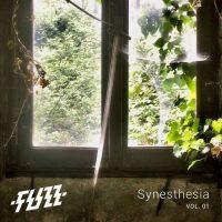 fuzz - synesthesia vol 01