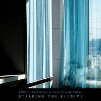 enrico coniglio & giulio aldinucci - stalking the elusive