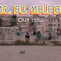 jess - mr bumble bee