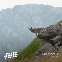 fuzz - synesthesia vol 03